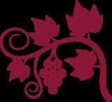 gîte vignes